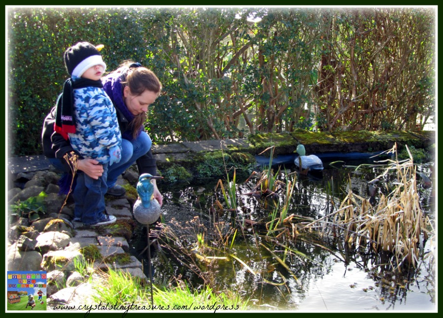 pond life, life cycle, frog spawn, frog eggs, outdoors, bonding, Crystal's Tiny Treasures Childminding in Whitehead, photo