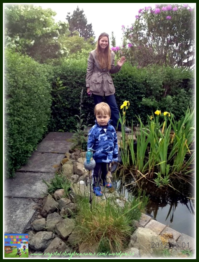 outdoors, spring pond, frog,s science, learning, photo