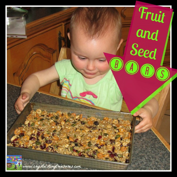 Fruit and seed bars by Crystal's Tiny Treasures