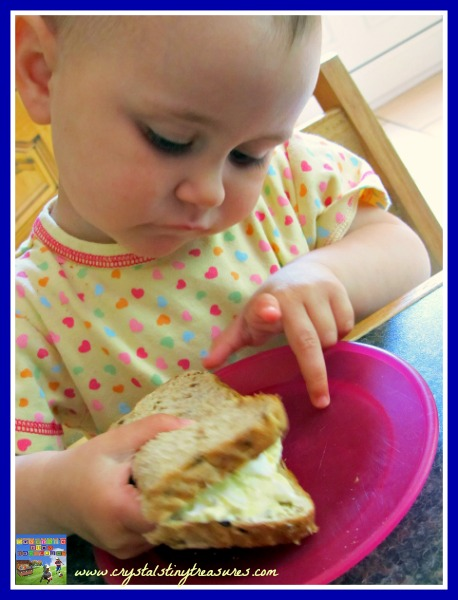 egg salad sandwich, children's lunch ideas, fun foods, easy science for children, photo