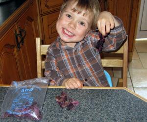 Dulce, seaweed, edible seaweed, Islandmagee seaweed, Crystal's Tiny Treasures childminding, photo