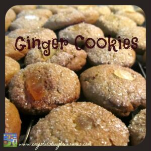 baking with kids, soft ginger cookies, holiday treats, everyday cookies, easy cookies, Crystal's Tiny Treasures, photo