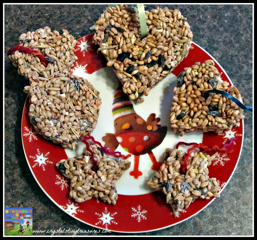 Cookies for the birds, feeding wildlife, birds in your garden, winter birds, Crystal's Tiny Treasures Childminding, photo