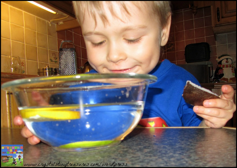 Preschool science, fun with fruit, float or sink activity, lemons and limes, Crystal's Tiny Treasures Chldminding, photo