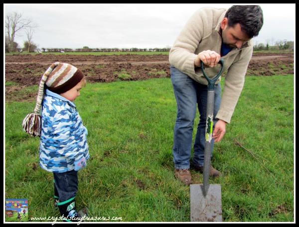 Tree planting, Queen's Jubilee in Northern Ireland, Earth day activities, photo