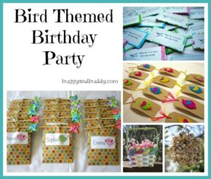 bird-themed birthday party
