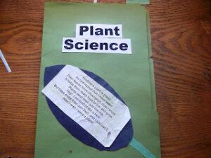 plant lapbook title page