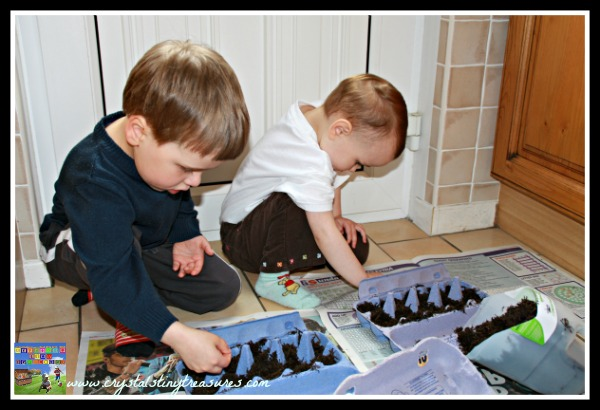 planting seeds in egg cartons, kids gardening projects, Crystal's Tiny Treasures, photo