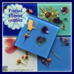 Pressed Flower Coasters
