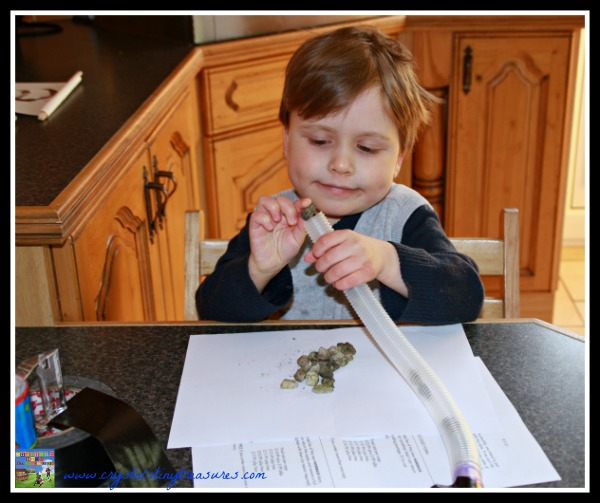 make your own musical instruments, frugal fun for kids, photo