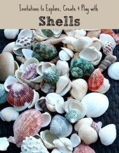 Shell-Activities-for-Kids
