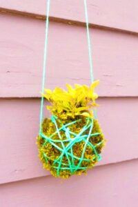 kokedama-hanging-garden-for-kids
