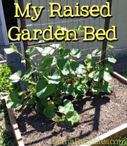 raised-garden-bed-wood