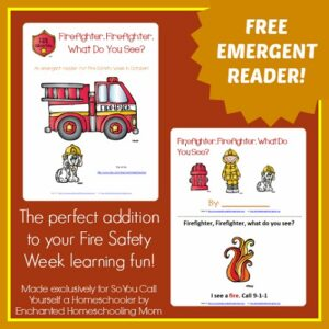Firefighter-Firefighter-What-Do-You-See-Emergent-Reader