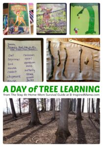 Nature-Activities-for-Kids-All-About-Trees-at-B-Inspired-Mama