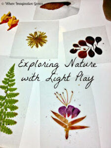 explore nature with light
