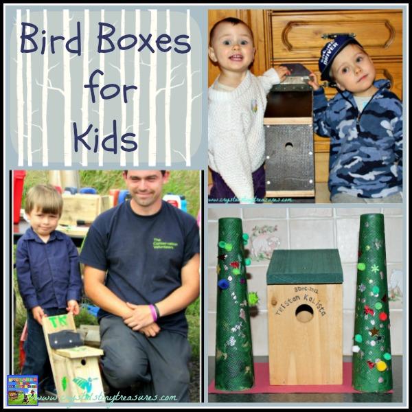 BUILDING A BIRD BOX FOR YOUR GARDEN