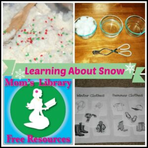 Learning About Snow with Mom's Library at Crystal's Tiny Treasures, Photo