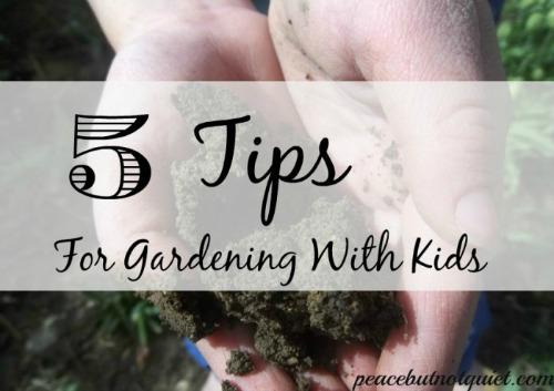 Gardening tips for kids, photo