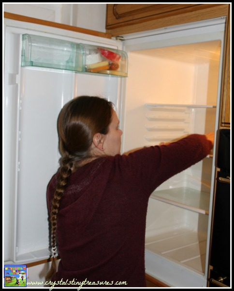 Cleaning a shelf of the fridge, Crystal's Tiny Treasures, household chore schedule, photo