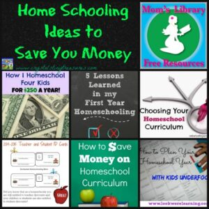 Home Schooling Ideas to Save You Money on Mom's Library with Crystal's Tiny Treasures, photo