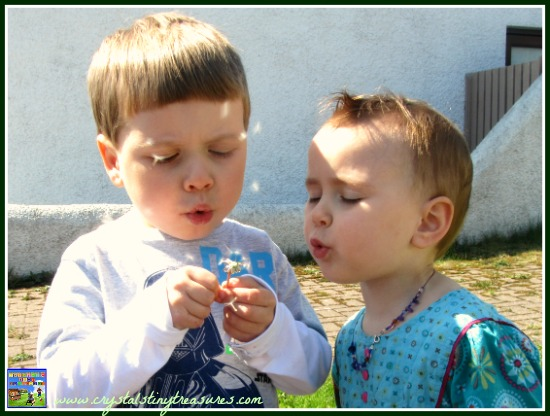 Having fun in the sun, Crystal's Tiny Treasures, kids and flowers, learning about plants, photo