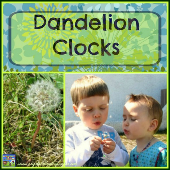 Dandelion Clocks Are Counting Fun For Kids, Crystal's Tiny Treasures