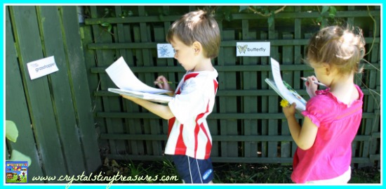 Read the room outdoors style, Crystal's Tiny Treasures, insect themed learning, photo