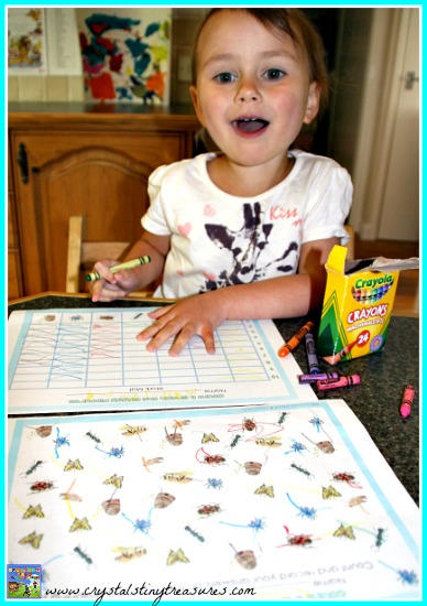 Fun graphing for early elementary, substitute teacher lessons, insect read the room, photo