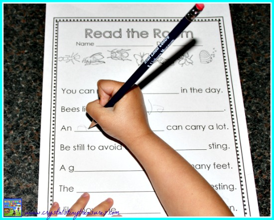 Grade 1-2 Read The Room with Insects, photo