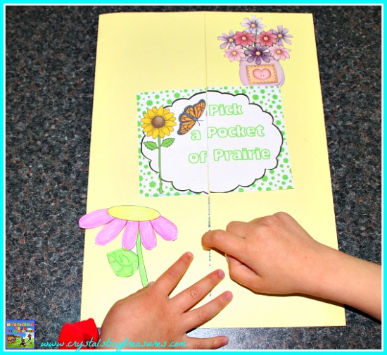 Pick A Pocket Of Prairie Lapbook, Crystal's Tiny Treasures, Learning about the Prairies, photo