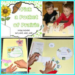 Pick A Pocket Of Prairie