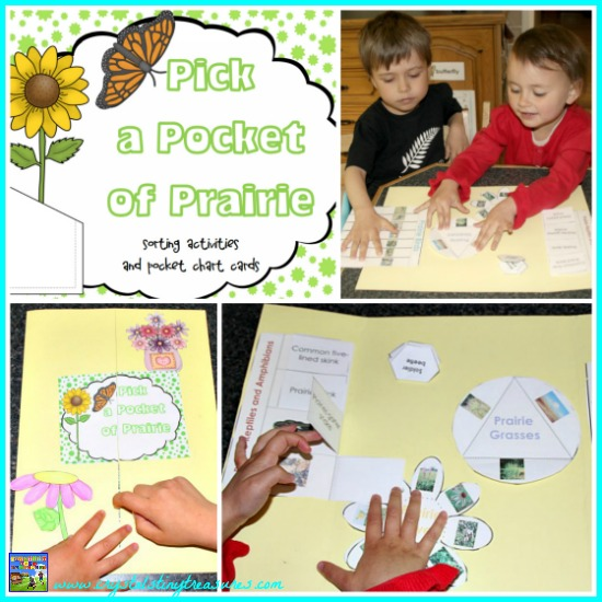 Pick A Pocket Of Prairie