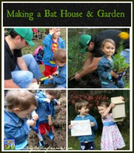 Making a bat house anda bat garden with Crystal's Tiny Treasures