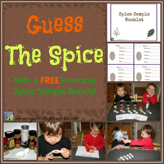 Guess The Spice with a free printable spice sample booklet