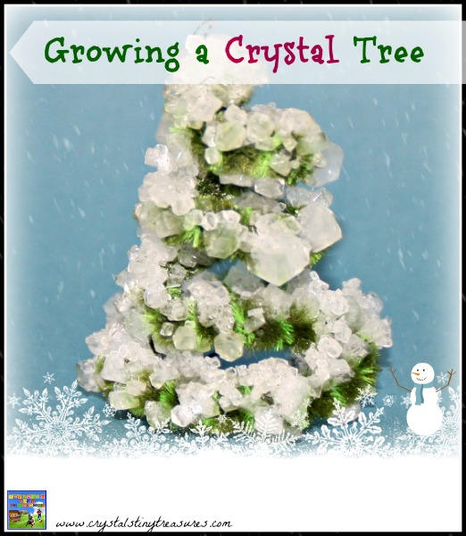 Growing a Borax Crystal Tree