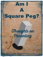 Am I a Square Peg? Thoughts on Parenting