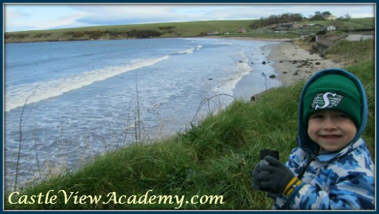 Counting migratory birds is a good learning experience for children