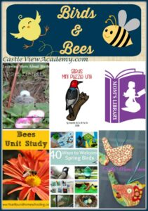 Learning About Birds and Bees on Mom's Library