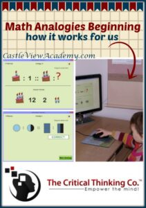 The Critical Thinking Co Pattern Explorer (homeschool curriculum