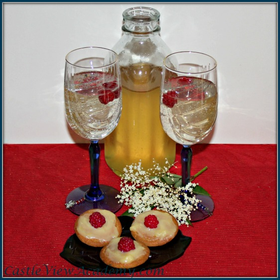 Elderflower Cordial by Castle View Academy