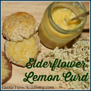 Enjoy some foraging and making your own delicious Elderflower Lemon Curd! There's nothing like it! The subtle taste of elderflower compliments a traditional lemon curd. Find the recipie at Castle View Academy