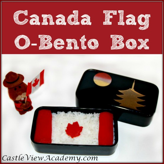 bento lunch box ideas canada bento box lunch containers canada images bento box lunch. Black Bedroom Furniture Sets. Home Design Ideas