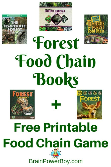 Best-Books-for-Boys-Forest-Food-Chain-Books