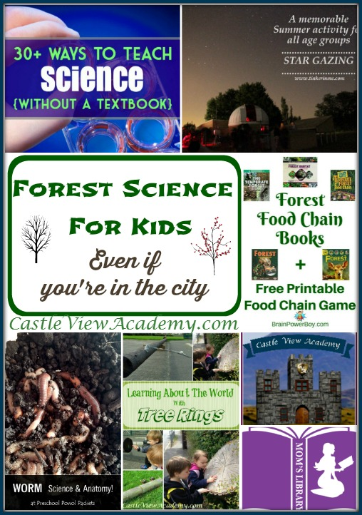 Forest Science For Kids (Even if you're in the city). Get outdoors and learn about the world around you!