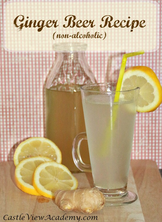 Homemade ginger beer recipe by Castle View Academy. A refreshingly great on a hot summer's day