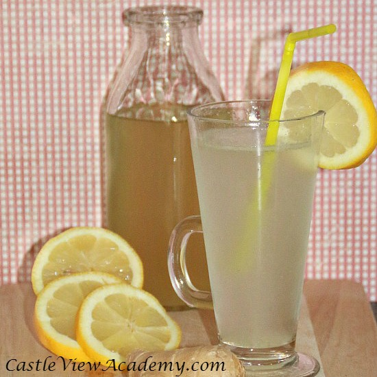 Homemade ginger beer recipe by Castle View Academy