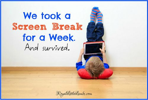 We took a screen break for a week and survived