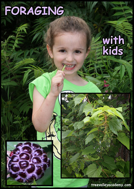 Foraging-with-Kids