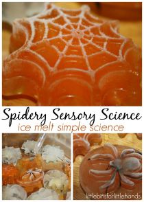 Spider-Ice-Melt-Science-Sensory-Play